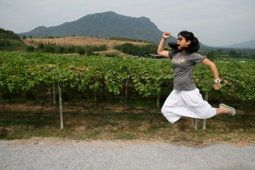 2nd visit to Hua Hin vineyard.